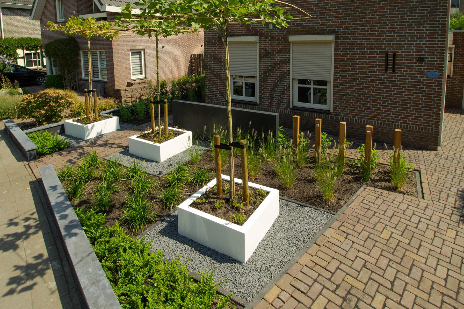 Modern, strakke tuin